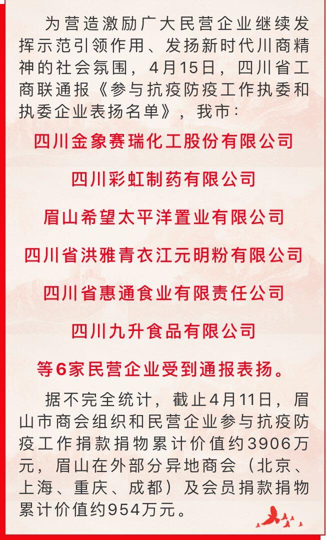 四川千赢国际下载:受到四川省工商联表扬